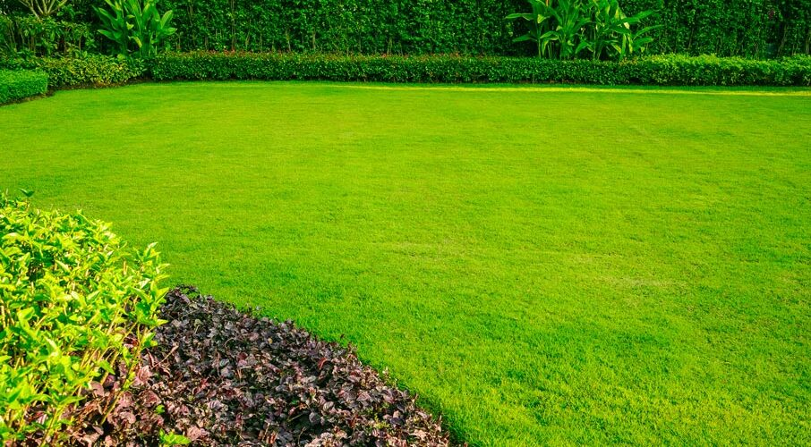 Is Astro Turf Different from Artificial Grass?